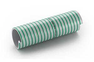 arizona-extrime-elastic